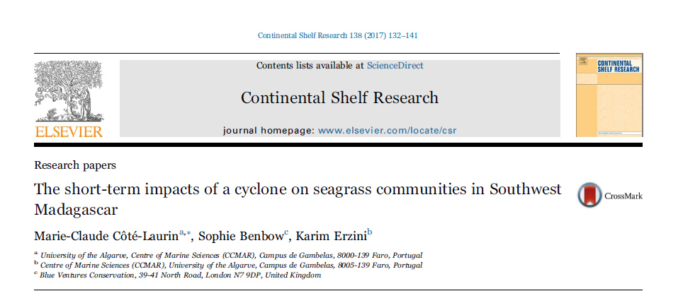 seagrass research paper
