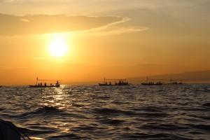 Lovina membawa turis melihat lumba lumba